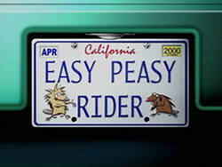 Easy Peasy Rider
