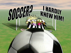 Soccer? I Hardly Knew Him!
